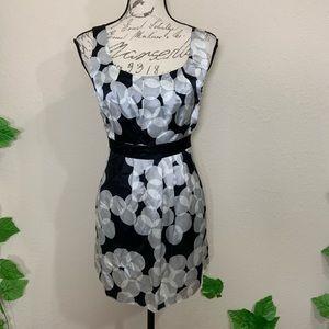 CAbi 367 Polka Dot Bubbles Silk Tunic Dress